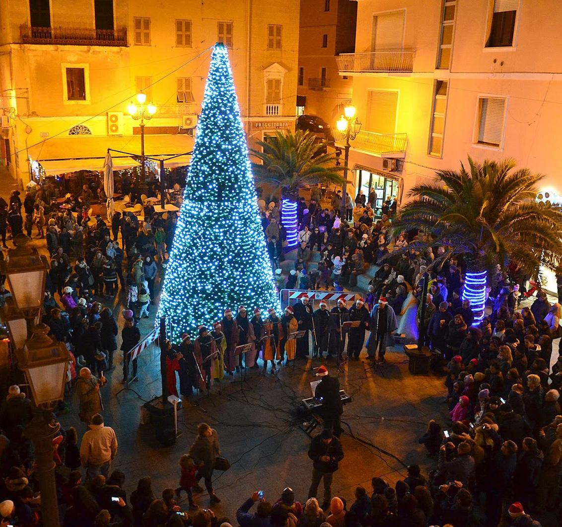 Acceso il grande albero di Natale!
