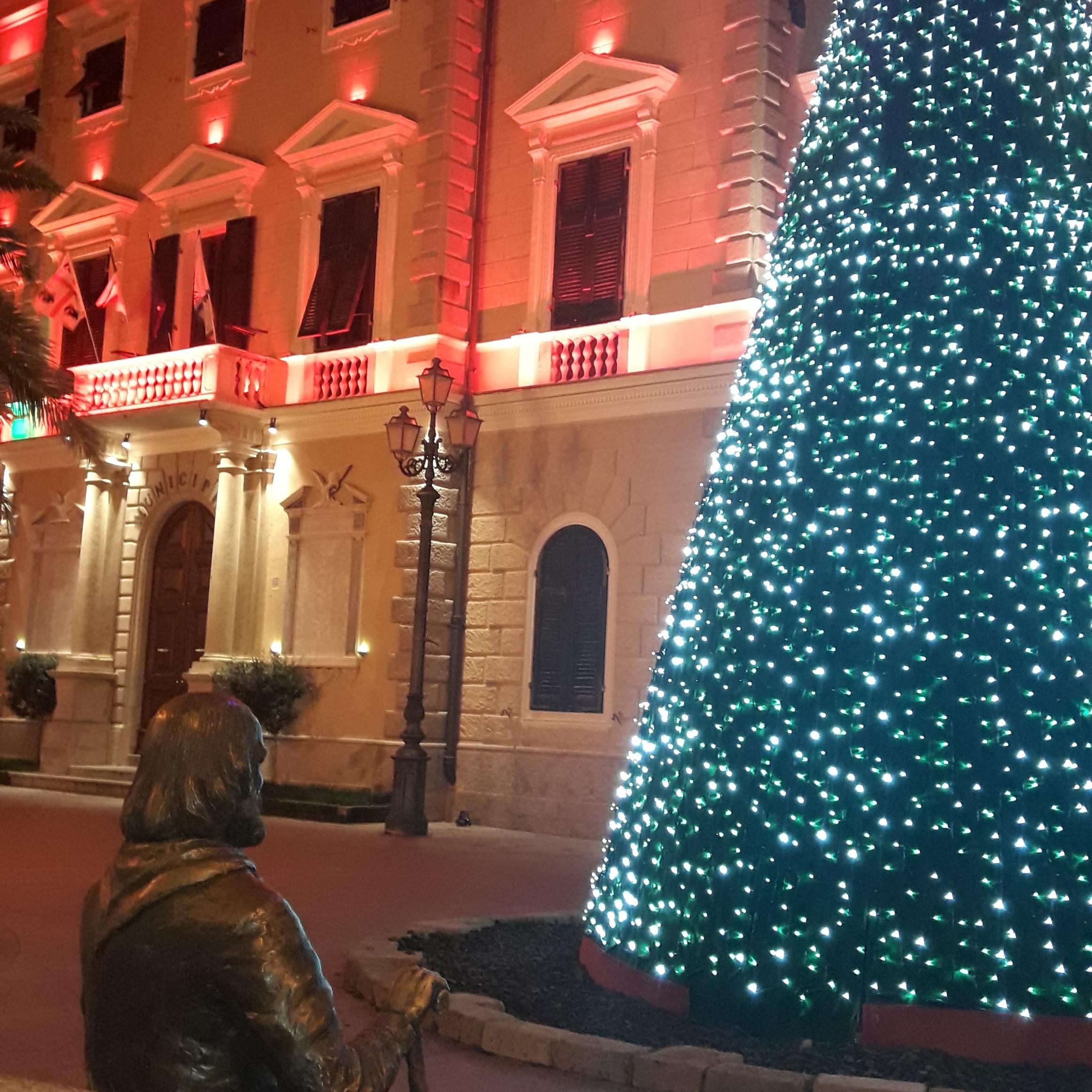 Illuminato il grande albero di Natale allestito dal Comune